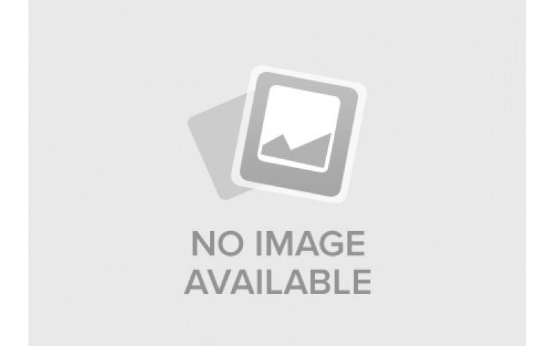 Шлифовальная машина по бетону Bosch GBR 14 CA l507