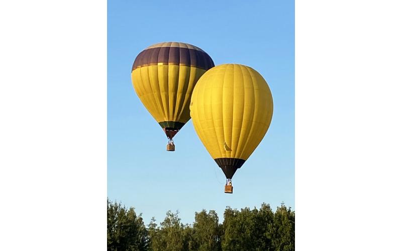 Полет на воздушном шаре Лимон qBeY